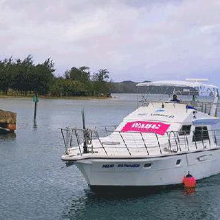 지금 HOT한 인기 액티비티 : 프로모션: 와그 핑크 괌 돌핀 크루즈 이미지