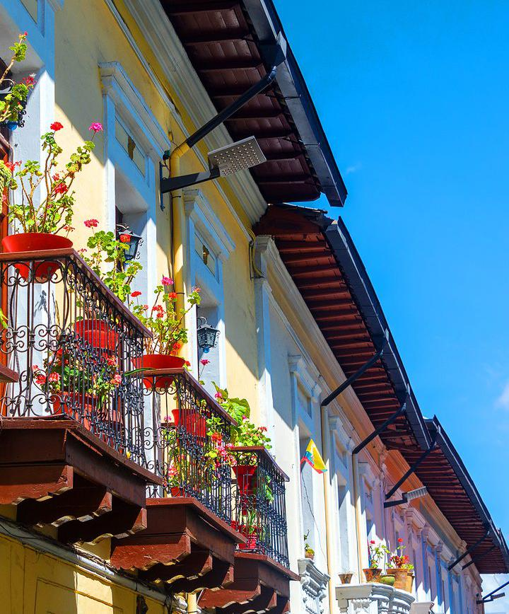 여행_유네스코 10대 문화유산의 도시 '키토'에서 구시가지 탐방하기 이미지