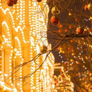 밤이 되면 깨어나는 곳, 뉴욕 록펠러 센터에서 크리스마스 야경 즐기기