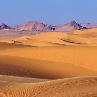사하라로 향하는 관문, 모로코 마라케시에서 사막 투어 떠나기