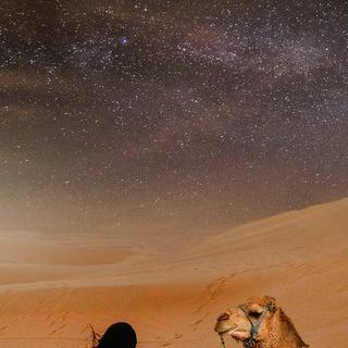 광활한 사막에서 쏟아지는 은하수 보며 잠들기