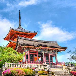 전통 건축물과 아름답게 물든 낙엽이 이루는 동양풍 매력