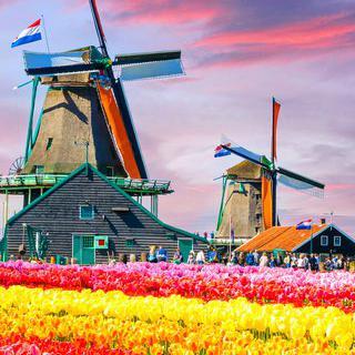 네덜란드의 이미지를 그대로 간직한 '잔세스칸스' 풍차마을 산책하기