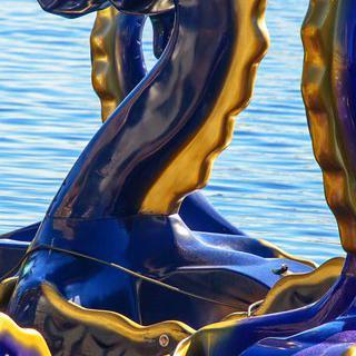 메릴랜드주의 웅장한 항구도시 '볼티모어'에서 해양 액티비티 즐기기