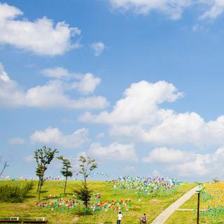 경기도 '파주'에서 이색적인 테마 여행 즐기기