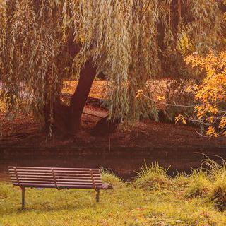 정원 도시 '크라이스트처치'에서 따사로운 햇살 아래 피크닉하기