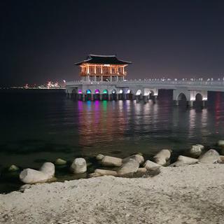 불빛으로 일렁이는 바다, 영일대 해수욕장에서 야경 보기