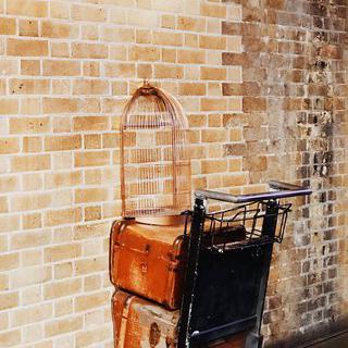 마법 학교 '호그와트'로 가는 길, <해리포터>의 '킹스크로스역' 방문하기