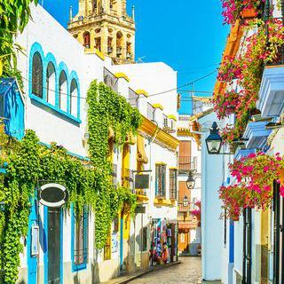 젊음이 살아 숨 쉬는 중세 유럽 최고의 도시 '코르도바' 여행하기