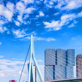 트렌드를 앞서가는 도시 '로테르담'에서 최첨단 현대 건축물 감상하기
