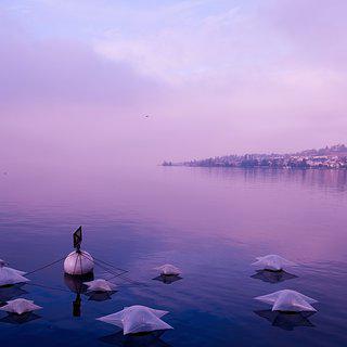 자연친화적인 도시, '창원'의 생태 호수 따라 산책하기