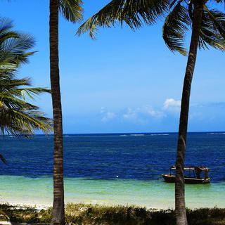 천천히 흘러가는 '몸바사' 해변에서의 평화로운 하루 만끽하기