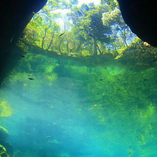 해를 품은 붉은 바다, 멕시코 '플라야 델 카르멘'에서 스쿠버 다이빙 즐기기