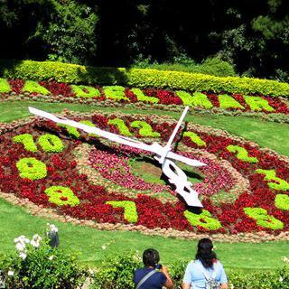 칠레의 정원 도시, '비냐 델 마르'에서 꿈의 휴가 보내기
