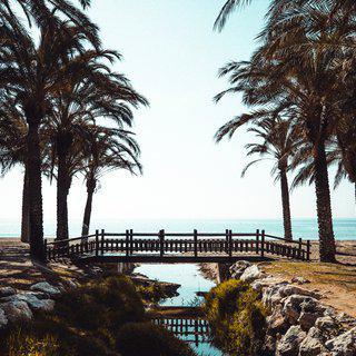 일몰이 내려앉은 '토레몰리노스' 해변 따라 산책하기