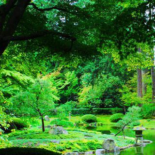 튤립 만발한 리세의 '쾨켄호프' 정원에서 봄기운 느끼기