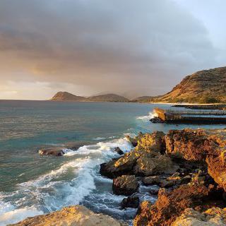 영롱한 바다에 피어난 산호, '카헤 포인트 비치 공원'에서 스노클링 하기