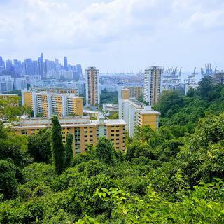 싱가폴의 아침을 여는 공원, 도심 속 힐링 스팟 페이버 산 공원에서 케이블카 타기