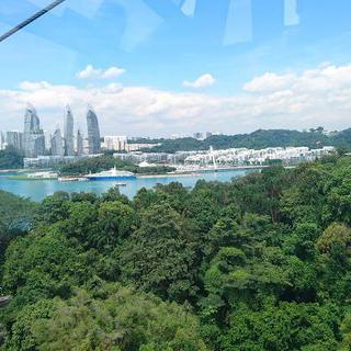 정글을 가르는 아드레날린, 'Mega Adventure - Singapore'에서 집라인 타기