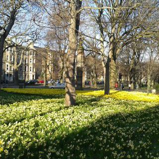드넓게 펼쳐진 초록의 휴식 공간, 더 미도우스 파크