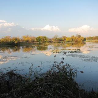 생명력 가득한 푸른 습지, 욘 하인즈 내셔널 와일드라이프 레푸게 앳 틴시엄에서 낚시하기
