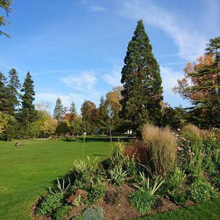 광활한 녹색 잔디 속 힐링, 'Jardin Park'에서 일광욕하기