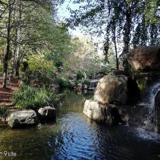 맑고 깨끗한 실개천이 있는 '일레 데 베르사유' 에서 힐링하기
