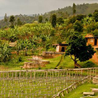 원두 향 은은하게 번지는 '부줌부라'에서 커피 한 잔의 여유 만끽하기
