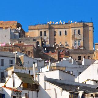 지중해 연안의 아름다운 도시, '알제'에서 문화유산 탐방하기