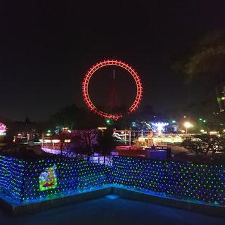 유원지를 수놓는 로맨틱한 조명, Seibuen Amusement Park에서 놀이기구타기