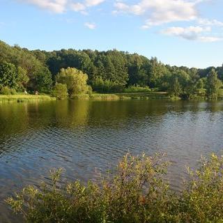 도시에서 만나는 신비한 자연, 'Izmaylovsky Park'에서 숲길 산책하기