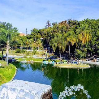멕시코 공원에서 하늘을 가로지르며 짚라인 타기