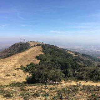 초록빛으로 물든 대자연과의 교감, 케냐의 초원 응공 힐스 자연보호지역에서 하이킹하기