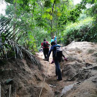 초보자도 쉽게 오르는 하이킹 코스, 녹음이 가득한 Kota Damansara Community Forest Reserve에서 하이킹하기