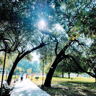 가볍게 뛰기 좋은 한적한 공원, 'Las Arboledas Park' 에서 운동하기