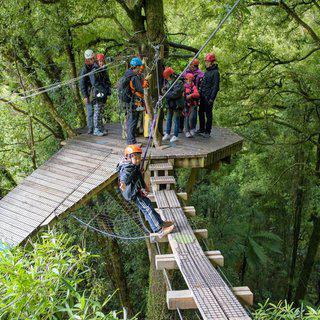 정글 속을 가르는 체험, '로토루아 캐노피 투어즈' 에서 짚라인 타기