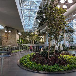 겨울에도 활짝 피어나는 실내 식물원, '데보니안 가든스' 에서 힐링하기
