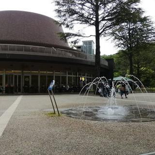 낮에도 뜨는 별! Kawasaki Municipal Science Museum 플라네타륨의 별자리 감상하기