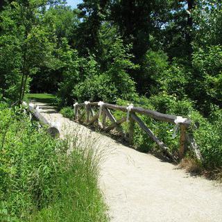 자연 그대로를 만끽할 수 있는 '더 그로브'에서 산책하기