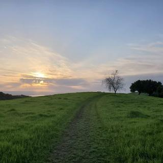 실리콘 밸리와 황혼 녹색 언덕, '에드 R. 레빈 카운티 공원'에서 노을 바라보기
