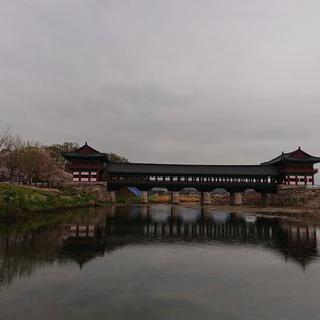 낭만적인 신라의 다리, '경주 월정교'에서 사진 찍기