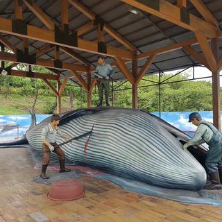 똑똑한 바다친구, '고래문화마을'에서 고래 공부하기