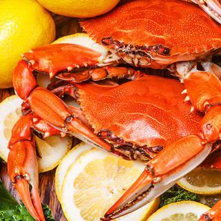 킹크랩의 진수, '크랩 쉑'에서 맥주를 곁들인 해산물 요리 즐기기