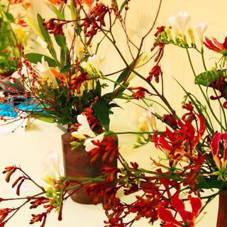 겨울에 만나는 봄의 풍경, 'Okinawa International Orchid Show' 관람하기