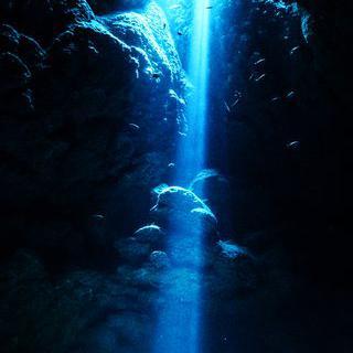 은은하게 빛나는 바다의 '오키나와 푸른 동굴'에서 스노클링 하기