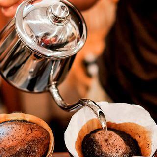 산지의 신선함을 담은 커피, 'Greenwell Farms Inc' 방문하기