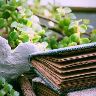 세상에 하나뿐인 노트, 'Note a Book Shop&Studio'의 북 바인딩 체험하기