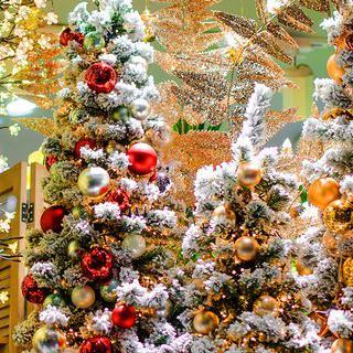 성탄절을 준비하는 자세, '대구 크리스마스 페어'에서 쇼핑하기