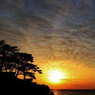 한반도에서 가장 먼저 해가 뜨는 곳, '울산 간절곶 해맞이 축제'에서 일출 보기