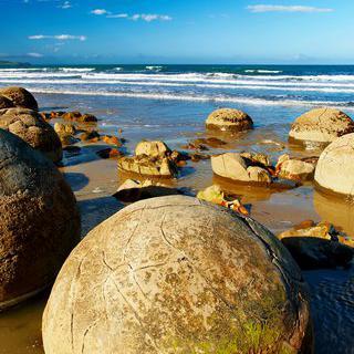 거북이를 닮은 바위, 'Moeraki Boulders Beach'에서 사진 찍기
